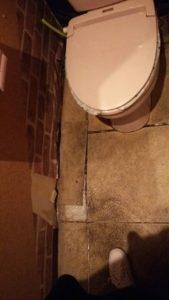 トイレ床修繕2