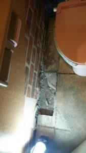 トイレ床修繕3