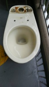 トイレ詰まり直し1